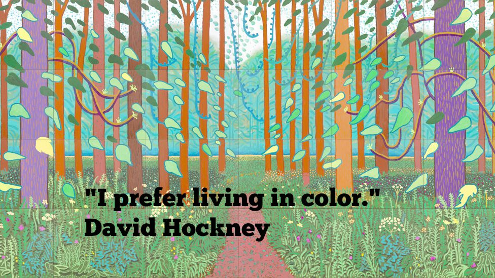 hockney meme